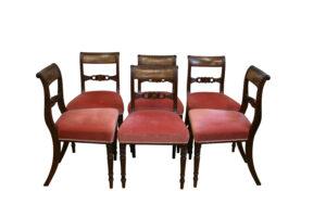 six mahogany Regency dining chairs/williamsantiques
