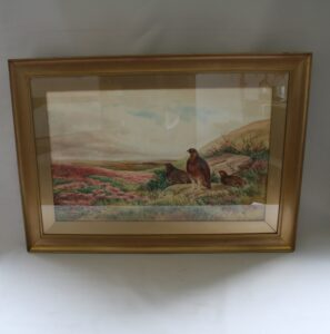 watercolour paintings of grouse